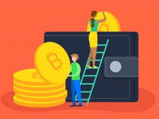 کیف پول ارز دیجیتال چیست و انواع آن کدام است؟ (Digital Currency Wallet)