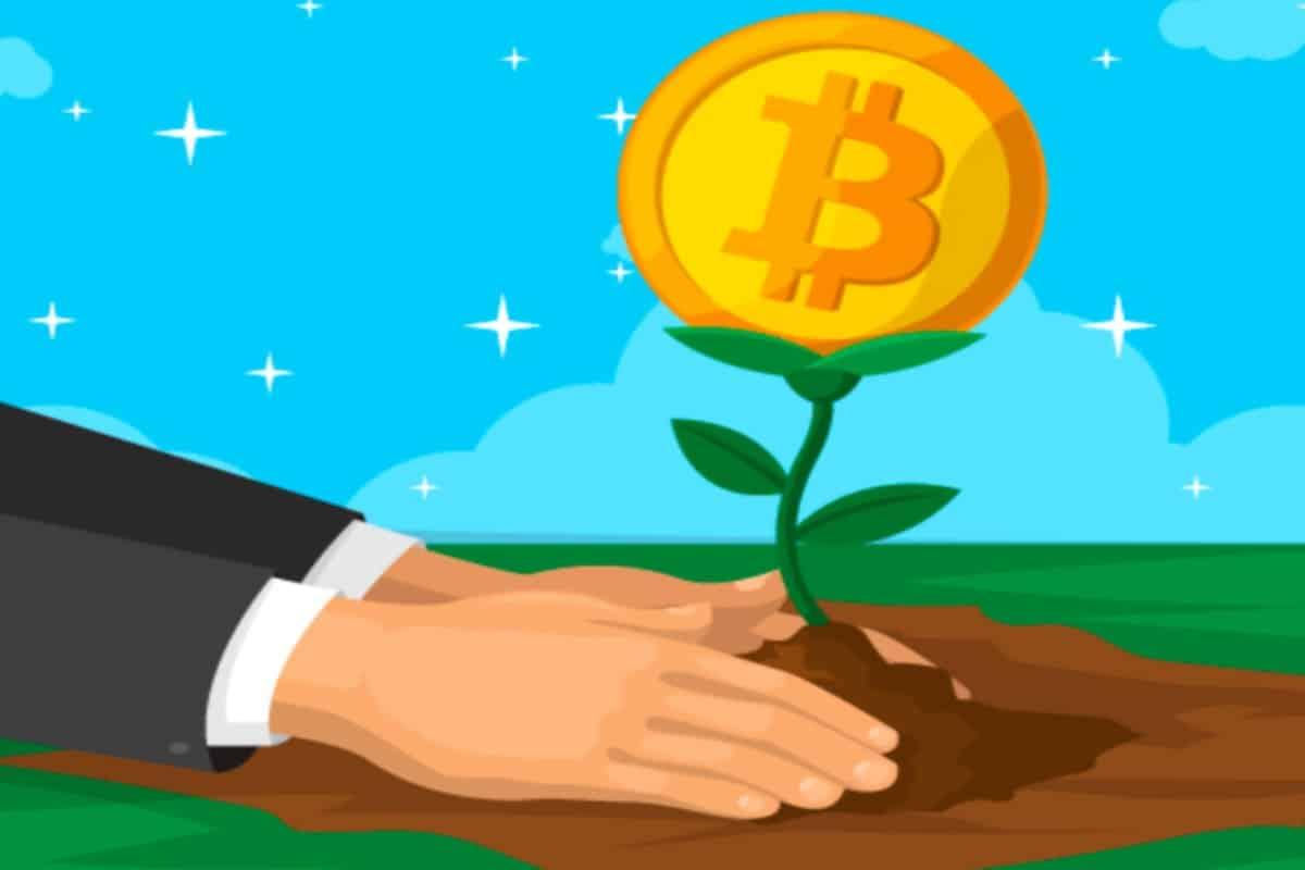 فاکتورهای کلیدی در انتخاب ارز دیجیتال برای خرید و سرمایهگذاری