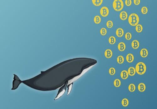 عملکرد نهنگ بیت کوین