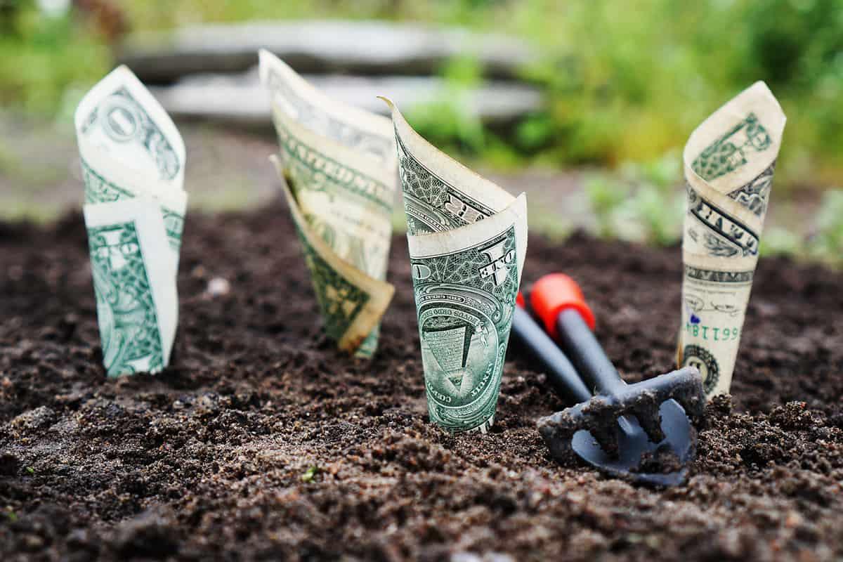 آموزش محاسبه نرخ بازگشت سرمایه یا ROI